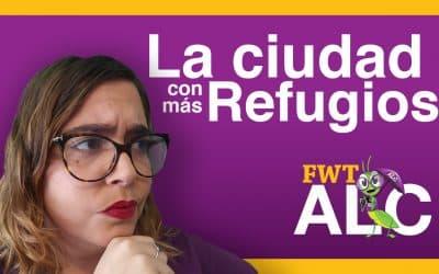 Alicante: Una de las ciudades con mas refugios de toda Europa